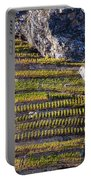 Steep Slope Viticulture In Valais Canton Portable Battery Charger