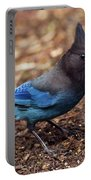 Stellar's Jay II Portable Battery Charger