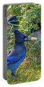 Steller's Jay Portable Battery Charger