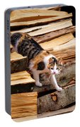 Stepping Down - Calico Cat On Beech Woodpile Portable Battery Charger