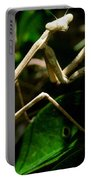 Stick Insect Portable Battery Charger