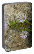 Stone Flowers Blue Portable Battery Charger