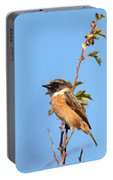 Stonechat On Branch Portable Battery Charger