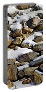 Stones And Snow Portable Battery Charger