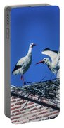 Storks Of Segovia Portable Battery Charger