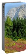 Storm Mountain Portable Battery Charger