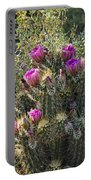 Strawberry Hedgehog Cactus  Portable Battery Charger
