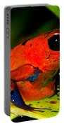 Strawberry Poison Dart Frog Portable Battery Charger
