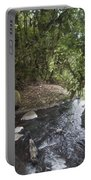 Stream In  Rainforest Portable Battery Charger