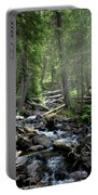 Streaming Through The Trees Portable Battery Charger