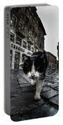Street Cat Portable Battery Charger