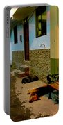 Street Dogs Portable Battery Charger