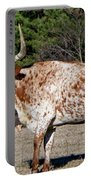 Strike A Pose - Longhorn Style Portable Battery Charger