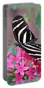 Striped Beauty - Butterfly Portable Battery Charger