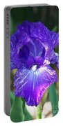 Striped Blue Iris Portable Battery Charger