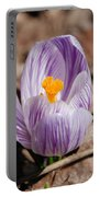 Striped Crocus Portable Battery Charger