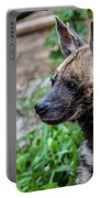 Striped Hyena Portable Battery Charger