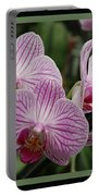 Striped Orchids With Border Portable Battery Charger