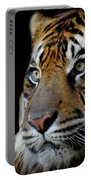 Stripes, No. 11 Portable Battery Charger