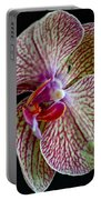 Study Of An Orchid 2 Portable Battery Charger