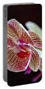 Study Of An Orchid 3 Portable Battery Charger