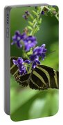 Stunning Black And White Zebra Butterfly In The Spring Portable Battery Charger