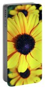 Stunning Black Eyed Susan  Portable Battery Charger