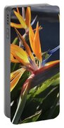 Stunning Bunch Of Flowers With Bright Orange Petals  Portable Battery Charger