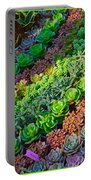 Succulent 1 Portable Battery Charger