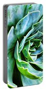Succulents Portable Battery Charger