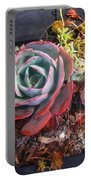 Succulent Plants. Multi-colored Portable Battery Charger