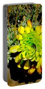 Succulent Study Portable Battery Charger