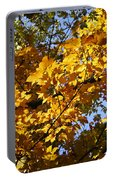 Sugar Maple Portable Battery Charger
