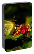 Sulpher Butterfly On Lantana Portable Battery Charger