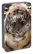 Sumatran Tiger-1440 Portable Battery Charger