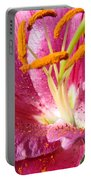 Summer Botanical Garden Art Pink Calla Lily Flower Baslee Troutman Portable Battery Charger