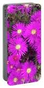 Summer Delight Portable Battery Charger