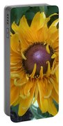 Summer Glow Portable Battery Charger