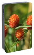 Summer Meadows Portable Battery Charger
