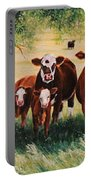 Summer Pastures Portable Battery Charger