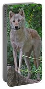 Summer Wolf Portable Battery Charger