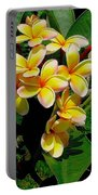 Summertime In Hawaii Portable Battery Charger