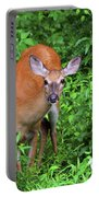 Summertime Visitor Portable Battery Charger
