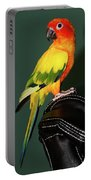 Sun Conure Portable Battery Charger