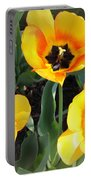 Tulips Kissed By The Sun Portable Battery Charger