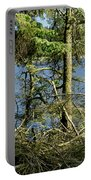 Sun Of The Loch Afternoon. Portable Battery Charger