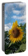 Sun Power Portable Battery Charger