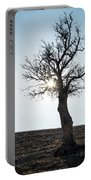 Sun Rays And Bare Lonely Tree Portable Battery Charger