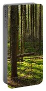 Sun Rays In Forest Portable Battery Charger