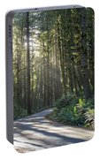 Sun Rays Through The Forest Portable Battery Charger